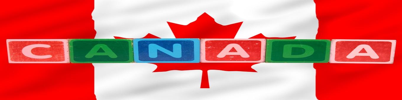 """""""加拿大教育""""的图片搜索结果"""